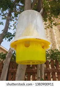 Ecological insect traps (fly traps) are used to monitor or directly reduce populations of insects or other arthropods. It can be use in parks gardens and outdoors.