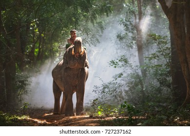 Ecological life of elephants and people in Asia.
