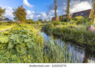 Ecological natural park with river and wild vegetation in the urban area of Soest, Netherlands