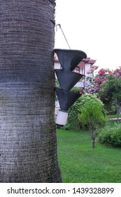 Ecological traps for insects suspended from a tree are used to directly reduce populations of insects or other arthropods. It can be used in parks gardens and outdoors.