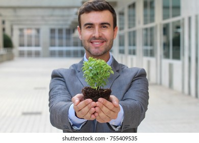 Ecologist holding a cute little plant