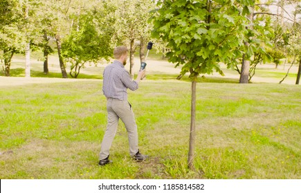 Ecologist measuring the level of electromagnetic radiation near highway. Damage appreciate to nature in an urban environment