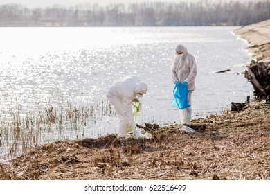 Ecologist working together on on dirty beach of the lake. Ecology and people concept.