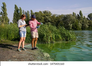 ecologists research green algae sample taken in river and enter data on tablet