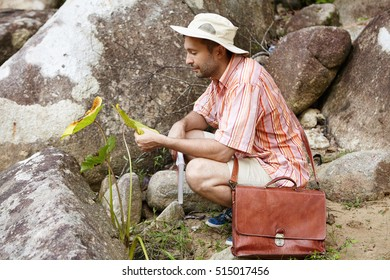 Ecology, biology and science concept. Bearded botanist or biologist with briefcase researching quality and growth of natural plant sample while studying bio-diversity in rainforest, sitting at rocks