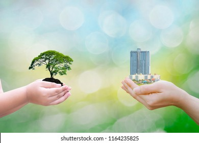 Ecology concept child human hands holding big plant tree building with on blurred background world environment