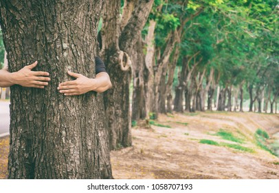 Ecology concept Hand man hug tree love forests and trees