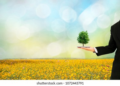 Ecology concept human hands holding big plant tree with world environment