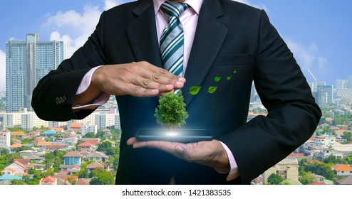 Ecology concept human hands holding big plant tree with on the smartphone in world environment day