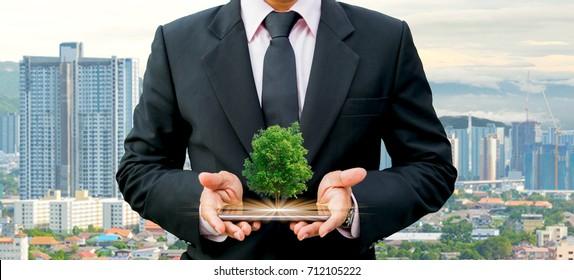 Ökologie-Konzept: menschliche Hände, die großen Pflanzenbaum halten, mit dem Weltumwelttag