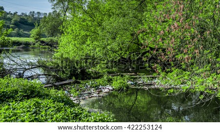Ecology Concept Small River Water Pollution Stock Photo (Edit Now