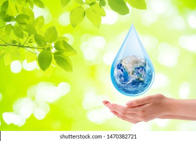 Ecology Concept : Woman hand holding planet earth globe in water drop with green natural in background. (Elements of this image furnished by NASA.)
