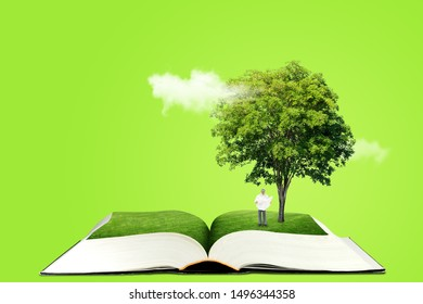 Ecology and Education Concept : Miniature figure character as people standing below green tree on opened book and reading a book.