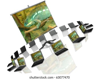 Ecology presentation - presentation stand on white background.