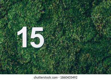 Ecology, zero waste. Green grass, digit fifteen. Birthday greeting card with inscription 15. Anniversary concept. Top view. Copy space. White numeral on eco moss background. Numerical digit.
