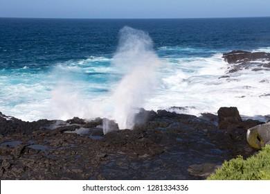 Ecuador, Galapagos Islands, Espanola, Punta Suarez. Blow hole on the rocky coastline.