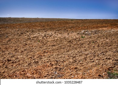 Edaphology. ground (lea) in spring period in area of predominance of clay soils with calcareous gravel, heavy land with low productivity, heavy textured soil with bad aeration. Asia minor