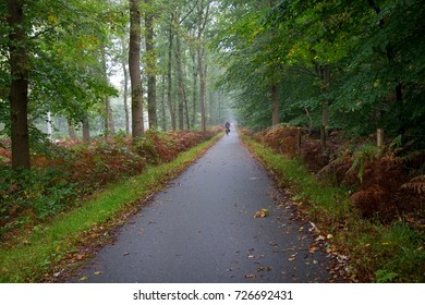 EDE, THE NETHERLANDS - SEPTEMBER 29, 2017. Bicycle path in the misty forest, with cyclist in the distance. Dutch people often use their bike as a daily mode of transport.
