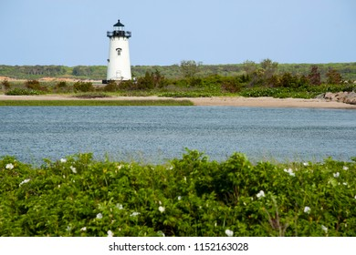 Edgartown lighthouse is a favorite destination for tourists on Martha's Vineyard during the summer months. Beach roses in the foreground surround the area.