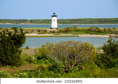 Edgartown lighthouse is surrounded by shrubs and wildflowers on Martha's Vineyard in Massachusetts. It is a favorite tourist attraction.