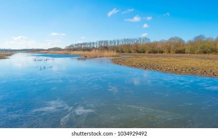 The edge of a frozen lake in sunlight in winter