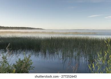 Edge of Marshland, Riding Mountain National Park, Manitoba, Canada