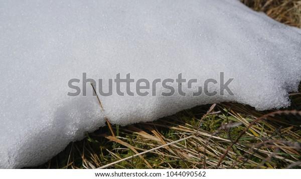 Edge of a snow drift in an Irish Bog