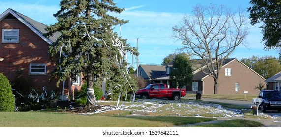 Edgewood Kentucky USA October 13th 2019: House gets toilet papered for two years in a row-Urban news photography