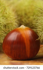 Edible chestnuts in macro Closeup and autumn color background