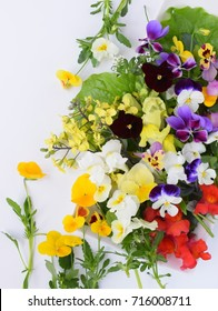 Edible flowers on white background.