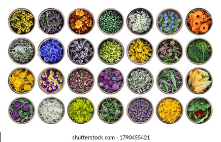 Edible flowers and plants in wooden cups isolated on a white background. Large collection of plants. Concept of edible flowers. Cuisine ingredient, condiment, herbal tea, medical and cosmetology.