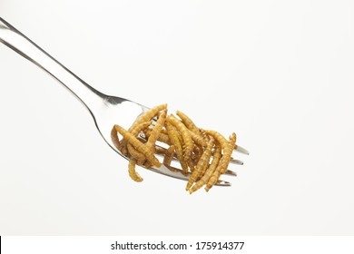 edible mealworms on a fork
