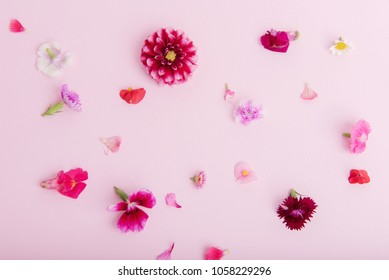 edible pink and purple flowers on pale pink background with room for quote or text