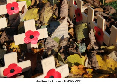 EDINBURGH, SCOTLAND - 30 October 2020 Wooden Scottish Poppy Appeal Crosses With Red Poppies Among Autumn Leaves for Remembrance Day
