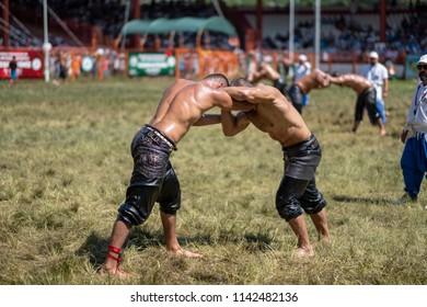 EDIRNE, TURKEY - JULY 14, 2018 : Middle weight wrestlers battle for victory at the Kirkpinar Turkish Oil Wrestling Festival in Turkey. (wrestler turkish mean is pehlivan or guresci)