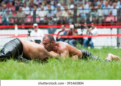 EDIRNE, TURKEY - JULY 26, 2010: Wrestlers Turkish pehlivan at the competition in traditional Kirkpinar wrestling. Kirkpinar is a Turkish oil-wrestling (Turkish: yagli gures) tournament.