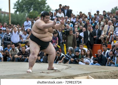 EDIRNE, TURKEY - JUNE 26, 2010 : A Japanese sumo wresler prepares for battle during an exhibition bout in Edirne in Turkey. A large crowd of Turkish people are gathered to watch the exhibition.
