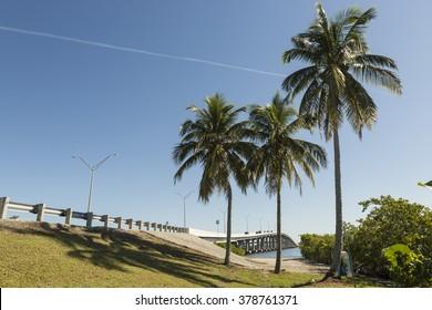 Cinema Fort Myers Beach Florida