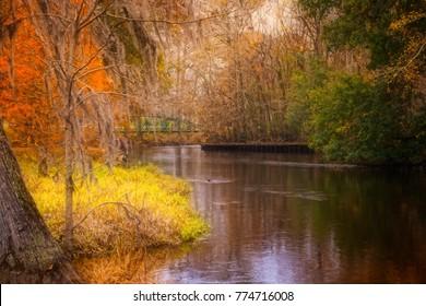Edisto River in Orangeburg SC is the longest free flowing blackwater river in North America.