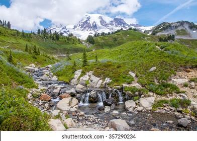 Edith Creek on Skyline Trail at Mt.Rainier National Park, U.S.A.