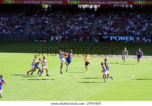 Editorial, Australian rules football players Geelong and bulldogs,