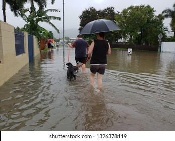 editorial. people walking through flooded streets with dog. Townsville, Australia- February 4, 2019. Largest flooding recorded in 100 years. twenty thousand homes flooded. Thousands evacuated