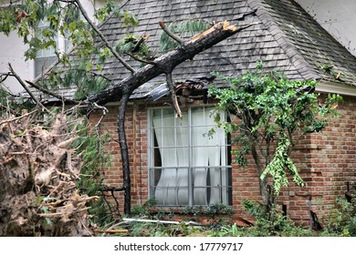Editorial Use Only: Fallen Tree Crown Ruining Roof Shingles and Window of Brick House