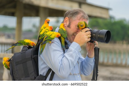 Editorial use only; funny wildlife photographer and cute birds, taken at Pattaya, Thailand, on June 30th, 2017.