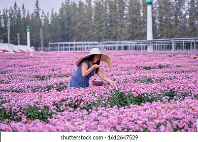 Editorial use only; a lady in large straw hat in field of flowers, taken at Pathumthani, Thailand, in January 2020.
