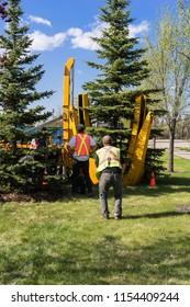 Edmonton, Canada, May 11, 2018: Contractor´s work crew planting
