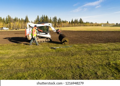 Edmonton, Canada, October 5, 2018: a worker montoring industrial installation of sod by Bobcat tractor