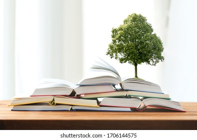 education, school, literature, reading and knowledge concept - oak tree growing on heap of books on wooden table