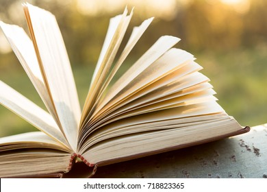Education and wisdom concept - open book under sunlight outdoors