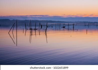 Eearly-morning view at Inba-swamp, Japan